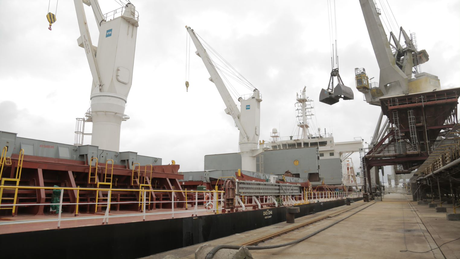 Innovation - Handysize Bulk carrier LD Bulk